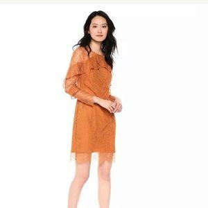 Nanette Laporte Lace shift dress gold size 8